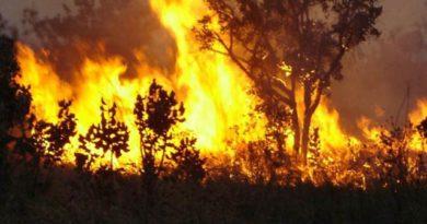 Flávio Dino decreta emergência para agilizar combate às queimadas